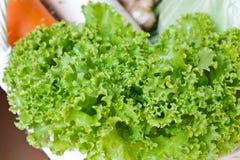 新鲜的绿色莴苣。 免版税库存图片
