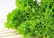 新鲜的绿色莴苣沙拉留下特写镜头 库存图片