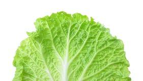 新鲜的莴苣/在白色背景隔绝的一片叶子 免版税库存图片