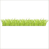新鲜的绿草行您的 免版税库存图片