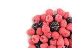 新鲜的黑莓和红草莓在一个小白色碗结果实 免版税库存图片