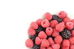 新鲜的黑莓和红草莓在一个小白色碗结果实 库存照片