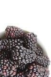 新鲜的黑莓在一个小白色碗结果实 免版税库存图片