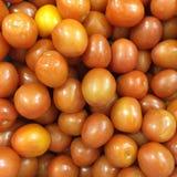 新鲜的组蕃茄 免版税库存图片