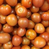 新鲜的组蕃茄 库存图片