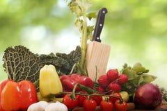 新鲜的素食主义者食物 库存图片
