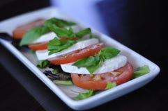 新鲜的Caprese沙拉开胃菜 库存照片