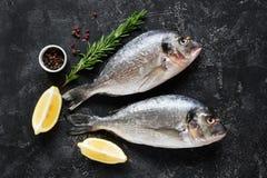 新鲜的dorado或鲈鱼鱼在板岩背景 库存照片