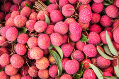 新鲜的lychee 库存图片