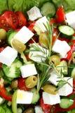 新鲜的mediteranian沙拉 免版税库存图片