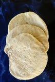 新鲜的pitta面包 库存照片