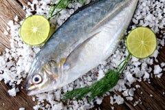 冻新鲜的trevally鱼 免版税图库摄影