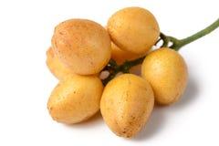 新鲜的wampee果子 免版税库存照片