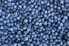 新鲜背景的蓝莓 库存照片