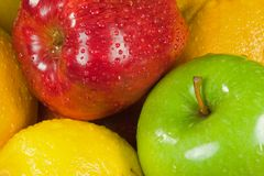 新鲜苹果的柑橘 图库摄影