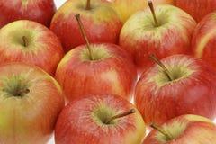 新鲜苹果的背景 免版税库存照片