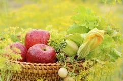 新鲜蔬菜和苹果 免版税库存照片
