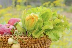 新鲜蔬菜和苹果 免版税库存图片