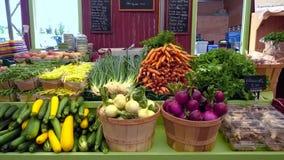 新鲜蔬菜待售在农夫市场上 股票视频