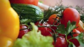 新鲜蔬菜收获的慢动作和 影视素材