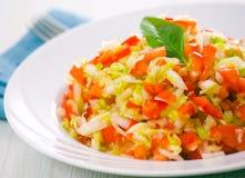 新鲜蔬菜沙拉 免版税图库摄影