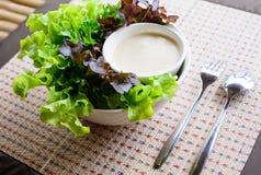新鲜蔬菜沙拉 免版税库存图片