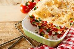 新鲜蔬菜烤宽面条五颜六色的盘  图库摄影
