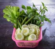 新鲜蔬菜用草本 免版税库存照片