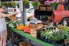 新鲜蔬菜的妇女购物 免版税图库摄影