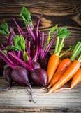 新鲜蔬菜红萝卜,在木背景的甜菜根 库存照片