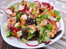 新鲜蔬菜鸡肉沙拉 免版税库存图片