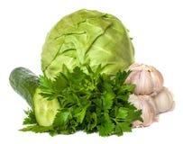 新鲜蔬菜,隔绝在白色背景 库存图片