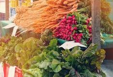 新鲜蔬菜-红萝卜,萝卜,莴苣,出售在一个农夫市场上在与其他菜的秋天晴天 免版税图库摄影