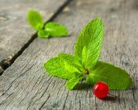 新鲜薄荷叶子和红浆果在老木背景 被弄脏的灰色背景 库存照片
