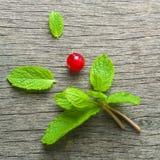 新鲜薄荷叶子和红浆果在老木背景 被弄脏的灰色背景 免版税库存照片