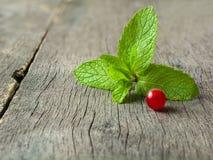 新鲜薄荷叶子和红浆果在老木背景 被弄脏的灰色背景 免版税库存图片