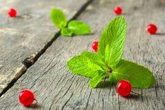新鲜薄荷叶子和红浆果在老木背景 被弄脏的灰色背景 图库摄影