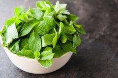 新鲜薄荷在陶瓷碗离开在黑暗的石背景 健康素食食物概念 选择聚焦 复制空间f 免版税图库摄影