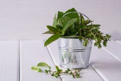 新鲜薄荷,麝香草-在一个小桶的芳香厨房草本 免版税库存照片