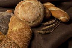 新鲜被分类的面包 免版税图库摄影