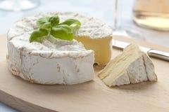 新鲜软制乳酪的干酪 免版税库存图片