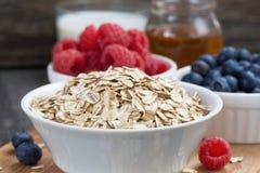 新鲜食品在黑暗的木背景的一顿健康早餐 库存图片