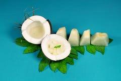 新鲜,可口椰子用瓜 库存图片