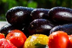 新鲜,成熟tomatoesand茄子特写镜头  小组蕃茄a 免版税库存图片