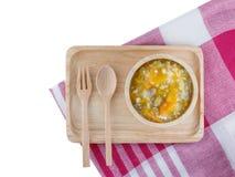 新鲜,有机纯汁浓汤菜和猪肉婴孩的木头的tr 免版税库存图片