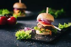 新鲜,自创素食者汉堡02 免版税库存照片