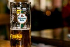 新鲜,金黄,地方德国啤酒 免版税图库摄影