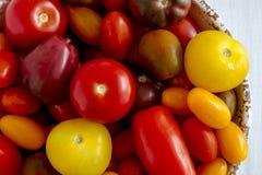 新鲜从在碗的庭院蕃茄 库存照片