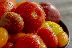新鲜从在碗的庭院蕃茄 库存图片