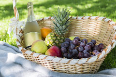 新鲜水果、香槟在毯子和草柳条筐  库存照片